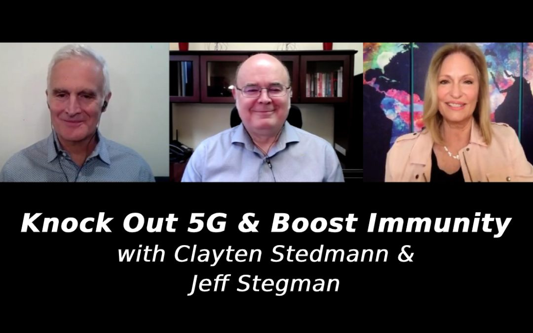 Knock Out 5G & Boost Immunity with Clayten Stedmann & Jeff Stegman