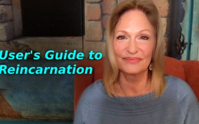 A User's Guide to Reincarnation | Regina Meredith